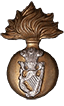 Royal Irish Fusiliers Badge
